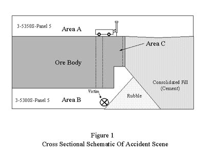 Diagram for Fatal Investigation Report